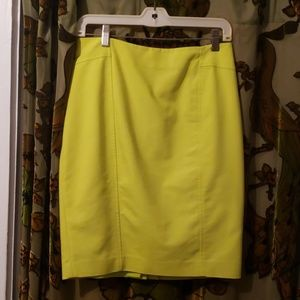 Lined, Bright Skirt